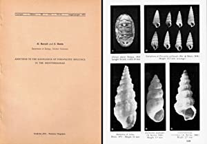 Additions to the knowledge of Indo-Pacific mollusca: Barash A. &