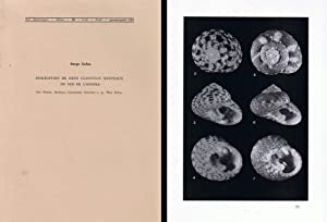 Description de deux Clanculus nouveaux du sud de l?Angola.In 8vo, original wrappers, pp. 8, with 1 ...