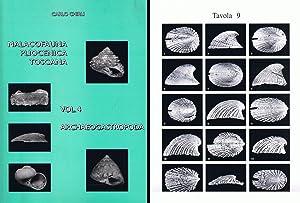 Malacofauna Pliocenica Toscana Vol 4 - Archaeogastropoda.: Carlo Chirli,