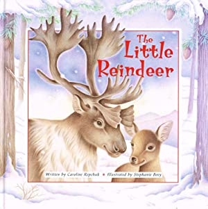 The Little Reindeer : Caroline Repchuk ;