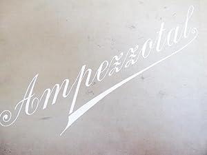 AMPEZZOTAL, 12 Giant Photographic Prints bound, plus 2 inlaid 9 x 12 Plates