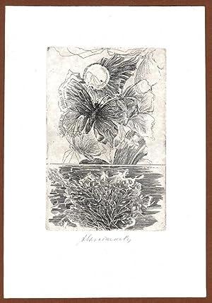 "O-Radierung ""Ex Libris De Filippis Mario"", ca.: Kracmar, Alois (Benesov"