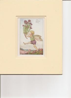 The Heather Fairy.: Barker, Cicely Mary.