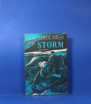 In the Stillness of the Storm: Gesner, Elsie Miller