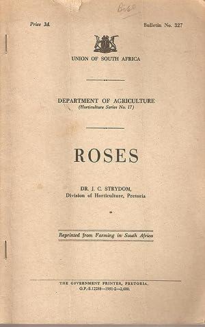 Roses: Strydom, J C