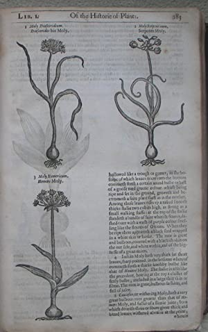 The Herball or General Historie of Plants: GERARD (John) and