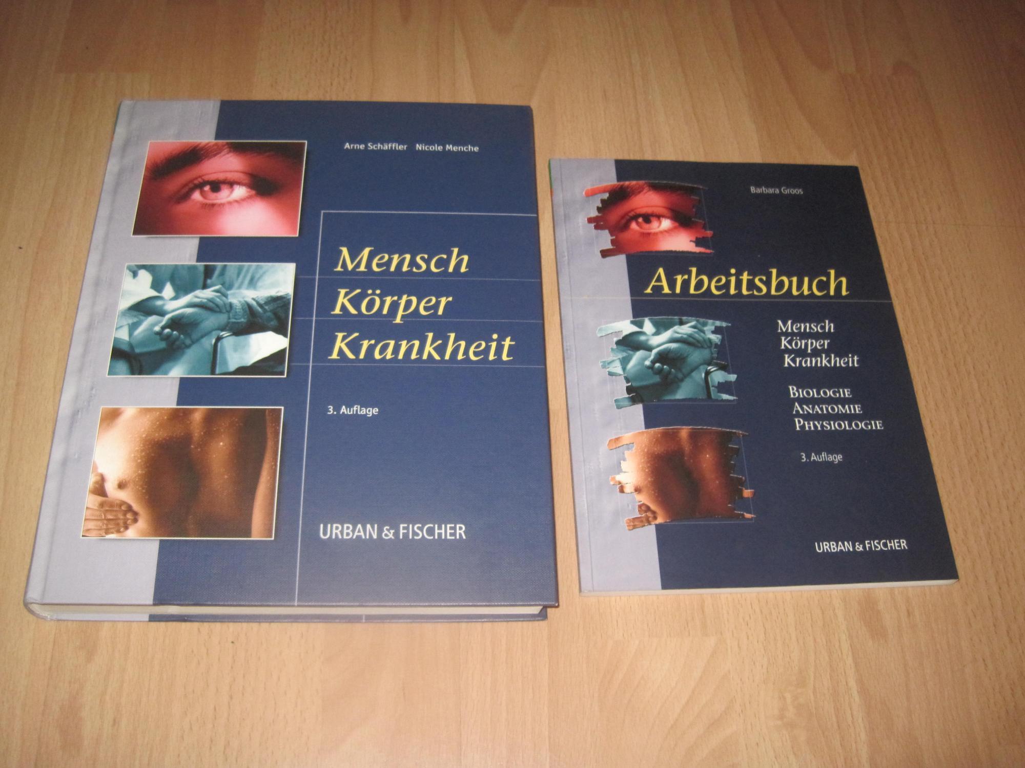 Tolle Grundlagen Der Menschlichen Anatomie Und Physiologie 11 ...