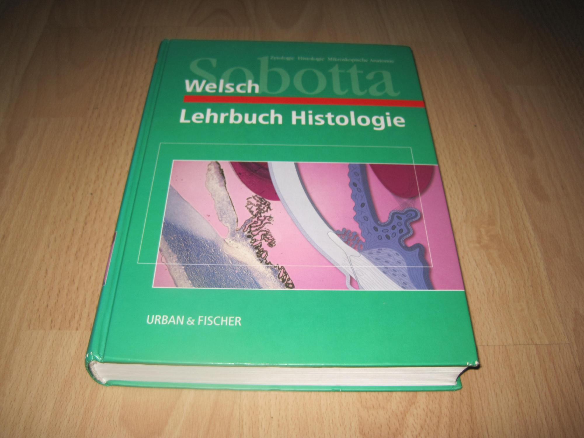 Groß Knochentabelle Galerie - Physiologie Von Menschlichen ...