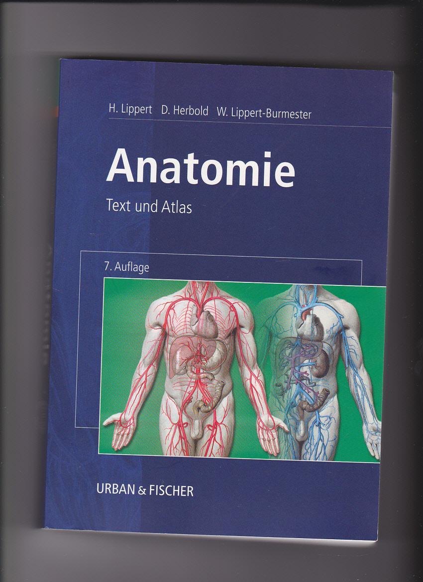 anatomie text und atlas von lippert - ZVAB