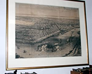 Bird's Eye View of New Orleans: Muller, Thomas (artist)