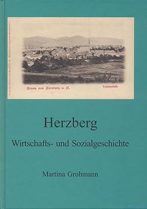 Herzberg ; Wirtschafts- und Sozialgeschichte.: Grohmann, Martina