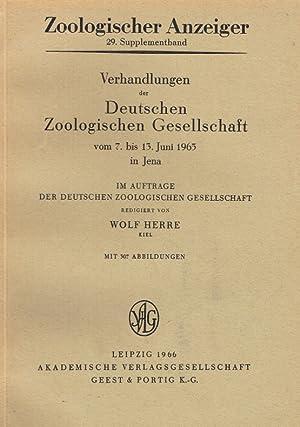 Zoologischer Anzeiger, 29. Supplementband: Verhandlungen der Deutschen Zoologischen Gesellschaft ...