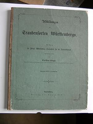 Abbildungen der vorzüglichsten und hauptsächlichsten Traubensorten Württembergs.: ...