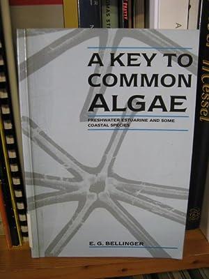 A Key to Common Algae: Bellinger, E.G.