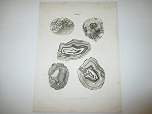 2 plates with natural printing of agate stones, 2 plates with natural printing of wood-samples.