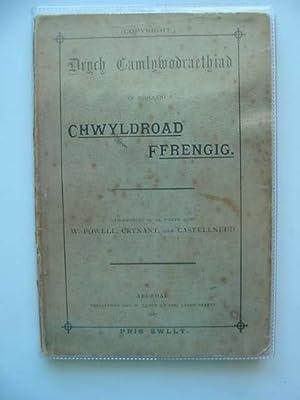 DRYCH CAMLYWODRAETHIAD YN NGOLEUNI Y CHWYLDROAD FFRENGIG: Powell, W.