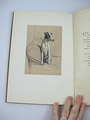 A DOZEN DOGS OR SO: Chalmers, Patrick R.
