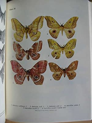 EMPEROR MOTHS OF SOUTH AND SOUTH CENTRAL AFRICA: Pinhey, Elliot