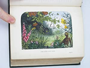TINY TADPOLE AND OTHER TALES: Broderip, Frances Freeling