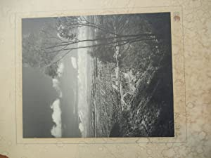 Large Original View Photograph Of Beverly Hills, Circa 1925/1935