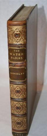The Water Babies - A Fairy Tale: KINGSLEY, Charles