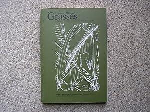 A Manual of Ghana Grasses.: R. Rose Innes