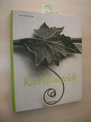 Karl Blossfeldt. 1865 - 1932.: Blossfeldt, Karl und