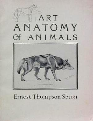 Studies in the Art Anatomy of Animals: Being a Brief Analysis of the ...