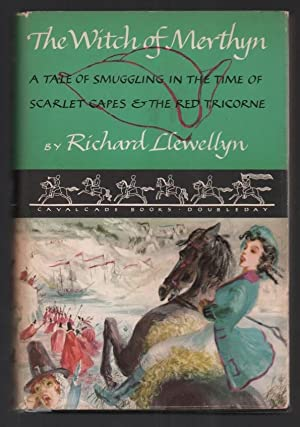 The Witch of Merthyn: A Tale of: Llewellyn, Richard