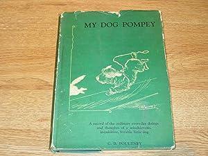 My Dog Pompey: C. B. Poultney