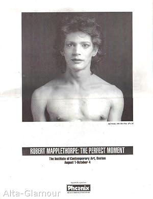 ROBERT MAPPLETHORPE: THE PERFECT MOMENT: Mapplethorpe, Robert (photos);