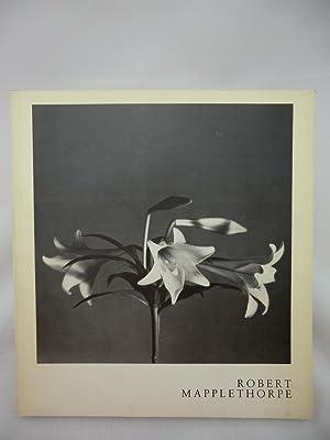Robert Mapplethorpe. Ausstellungskatalog. Mit einem Text von: Weiermair, Peter [Hrsg.]: