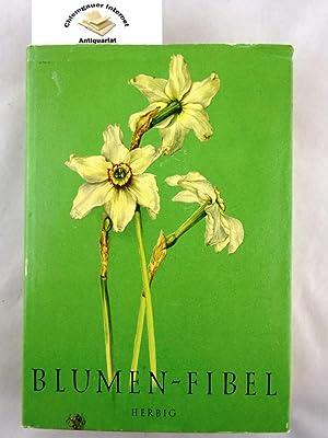AuBergewohnlich Blumen Fibel : Mit 160 Blumentafeln Nach Aquarellen: Felsko, Elsa M.: