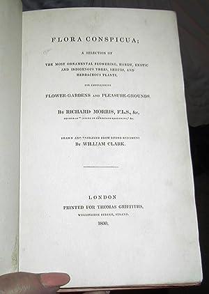 Flora Conspicua: Morris, Richard