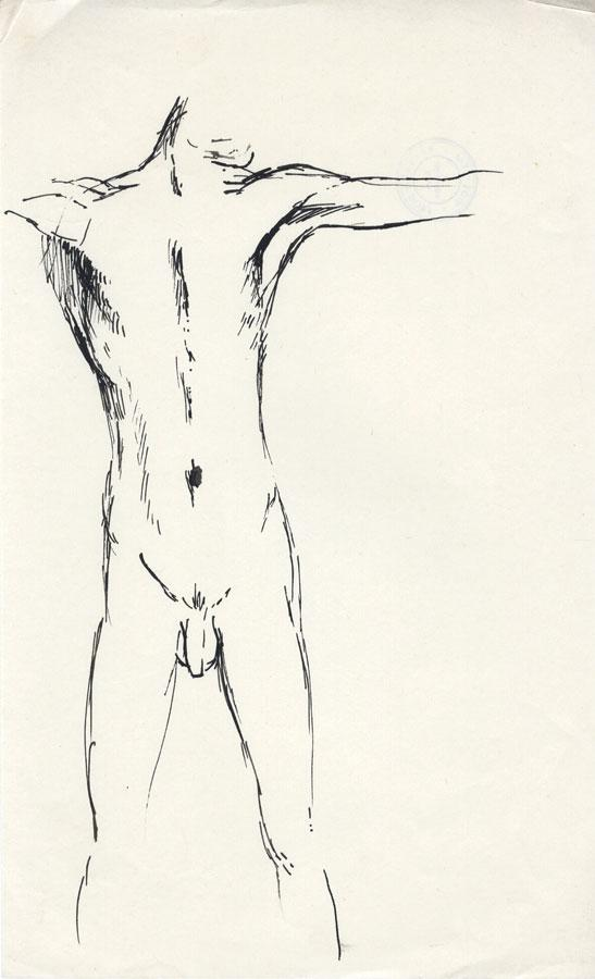 Barbara Dorf - Mid 20th Century Pen and Ink Drawing, Male Nude Study Barbara Dorf