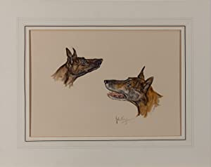 John King - Mid 20th Century Watercolour, Study of Lurchers