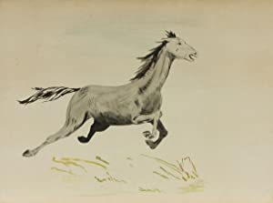 D. Neuland - Signed Mid 20th Century Watercolour, Prancing Stallion