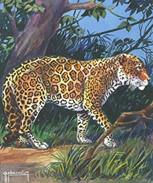 G. P. Micklewright - Signed Early 20th Century Watercolour, South American Jaguar