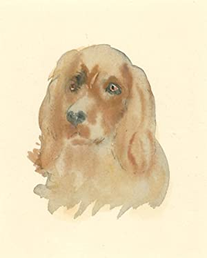 Fine Framed Mid 20th Century Watercolour - Dog