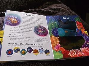 Moonlight Ocean, light beam book: Elizabeth Golding