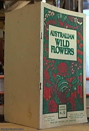 Australian Wild-Flowers; A Popular Introduction to the: Not Stated