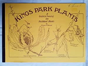 Kings Park Plants - A Guide to Naming the Bushland Plants
