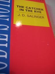 Brodie`s Notes on J.D. Salinger`s The Catche in the Rye: Handley, Graham and Catherine Madinaveitia...