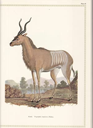 Fracois le Vaillant, Traveller in South Africa and his Collection of 165 Water-Colour Paintings 1...