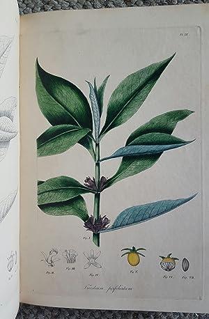 Jacob Bigelow's American Medical Botany, 1817-1821: An examination of the origin, printing, ...