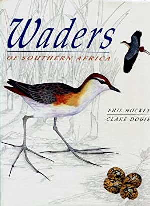 Waders of Southern Africa: Hockey, Phil; Douie, Clare