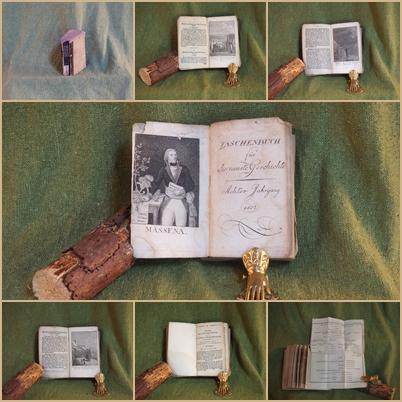 Taschenbuch für die neuste Geschichte. Achter und: Posselt, Ernst Ludwig