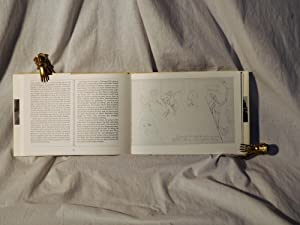 Aus den orientalischen Reisetagebüchern der Malerin Charlotte E. Pauly (1886 - 1981) nebst ...