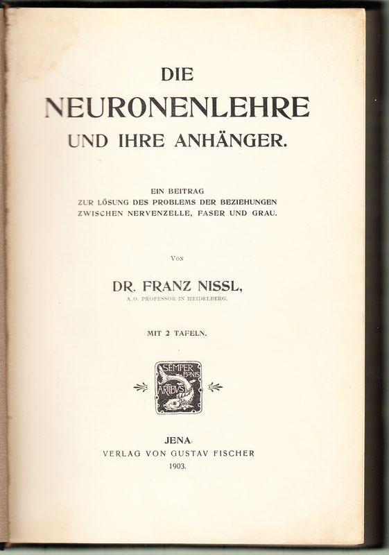 neuroanatomie struktur und funktion