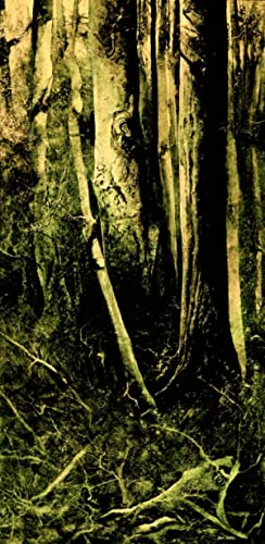 Sladden Wood: PETER KETTLE - Limited Edition Giclee Print